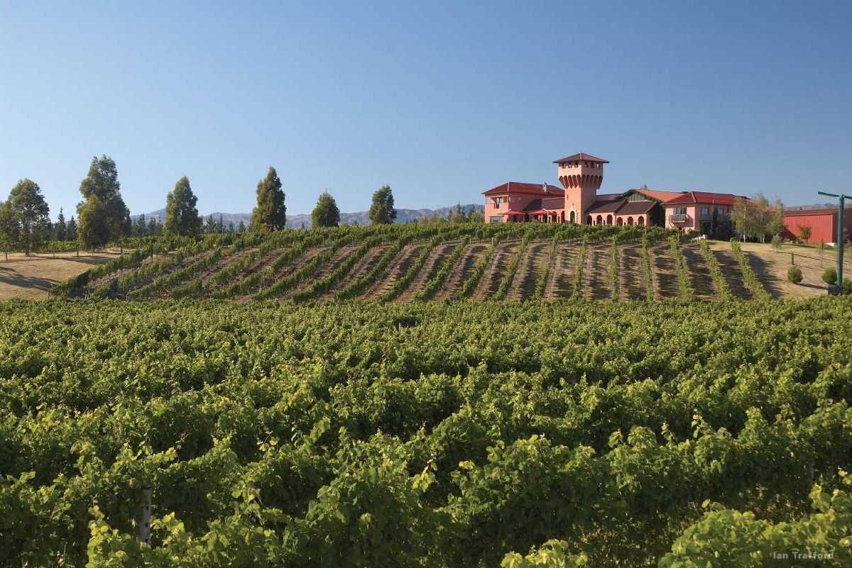 martinborough-wine-tour